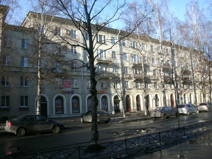Сестрорецкая ул. 7