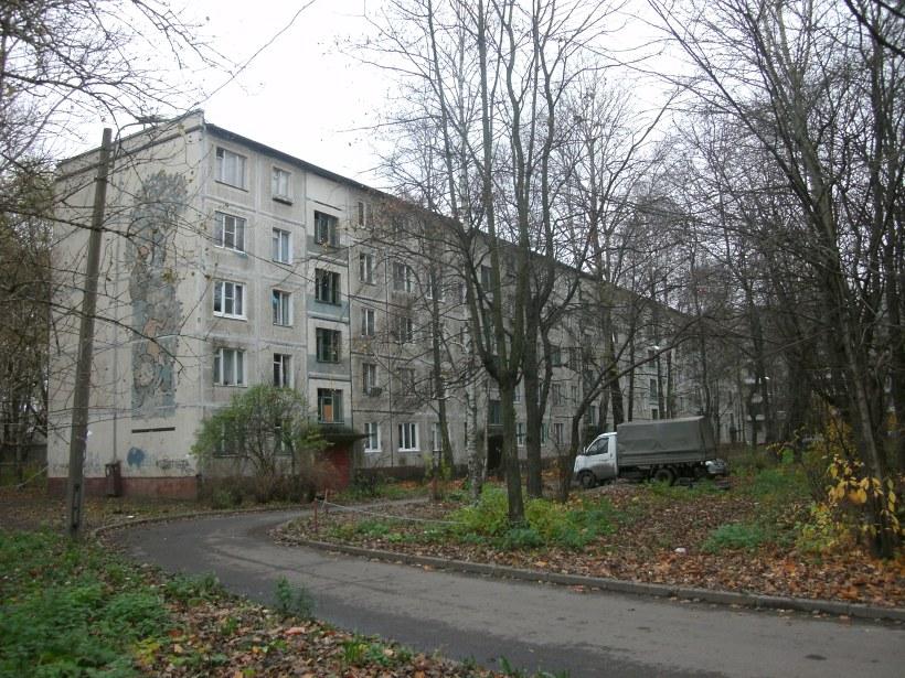 ул. Бабушкина 113к3
