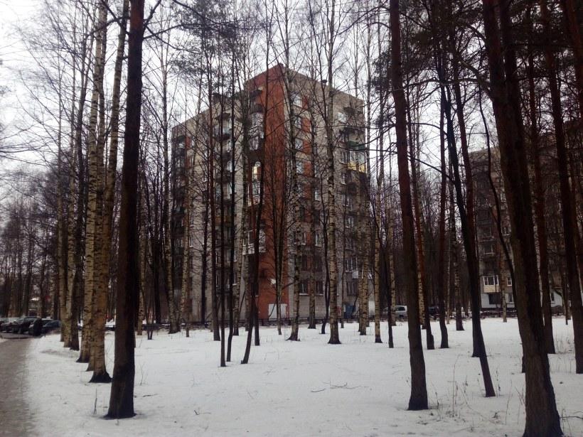 ул. Карпинского 9к2