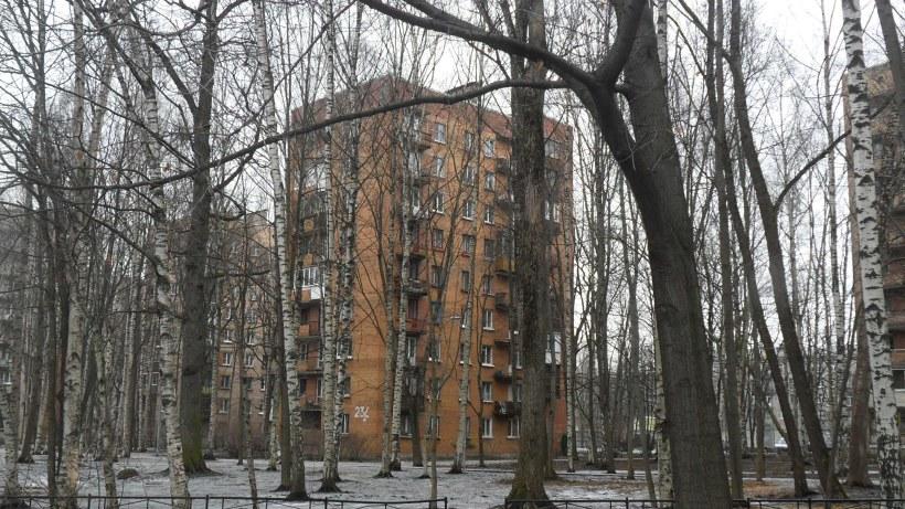 ул. Орбели 23к4