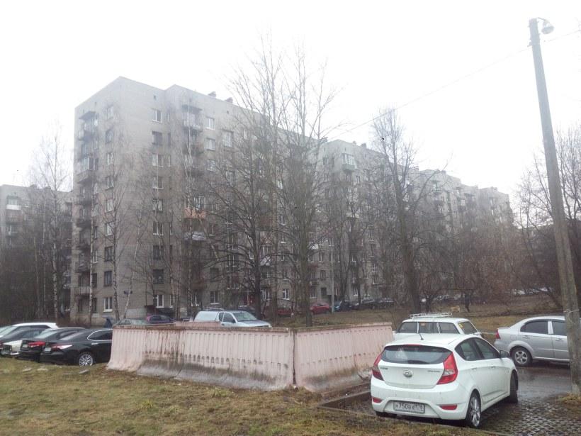 Будапештская ул. 38к3