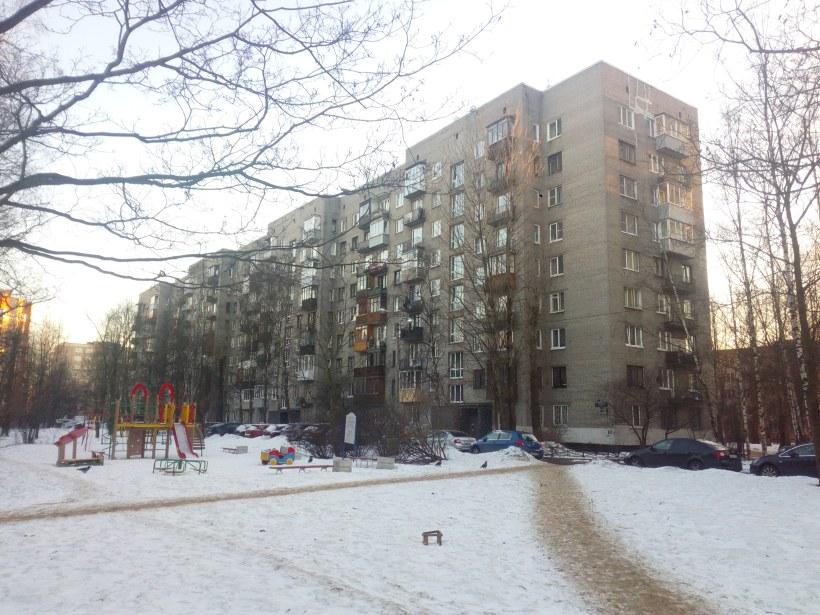 Бухарестская ул 94к4