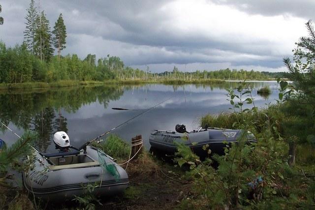 как сегодня с рыбалкой в разливе
