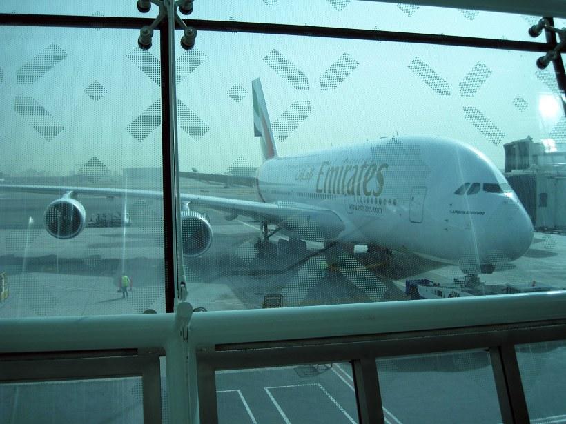 Купить билеты на самолет из санкт петербурга на тенерифе