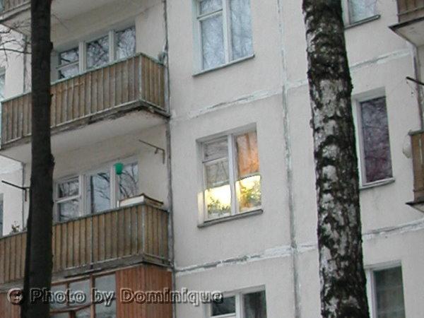 соседка в окне