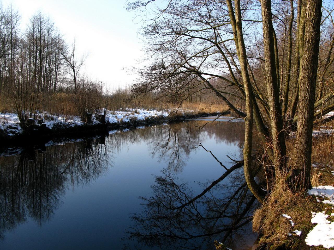 Фото черная речка 9 фотография