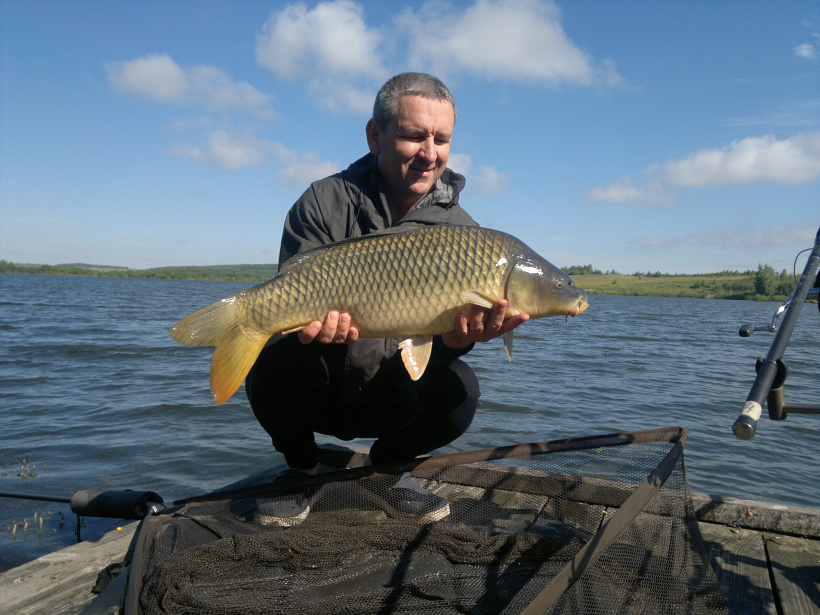 отчеты  со рыбалок на тайге